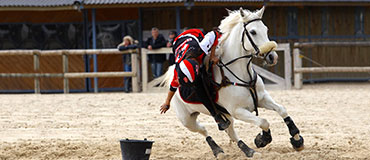 photo équitation poney games